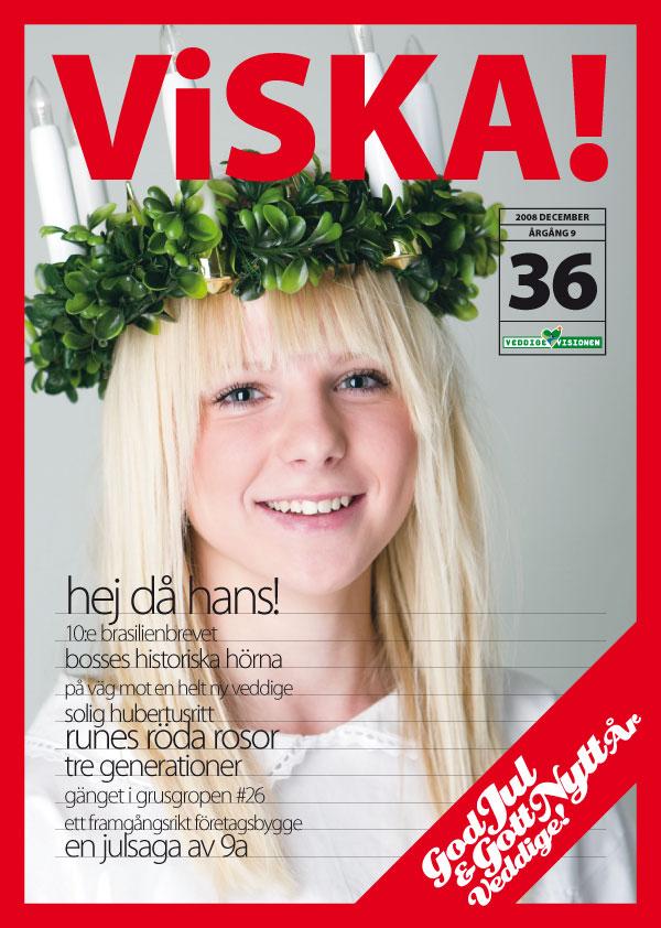 viska-2008-4-1